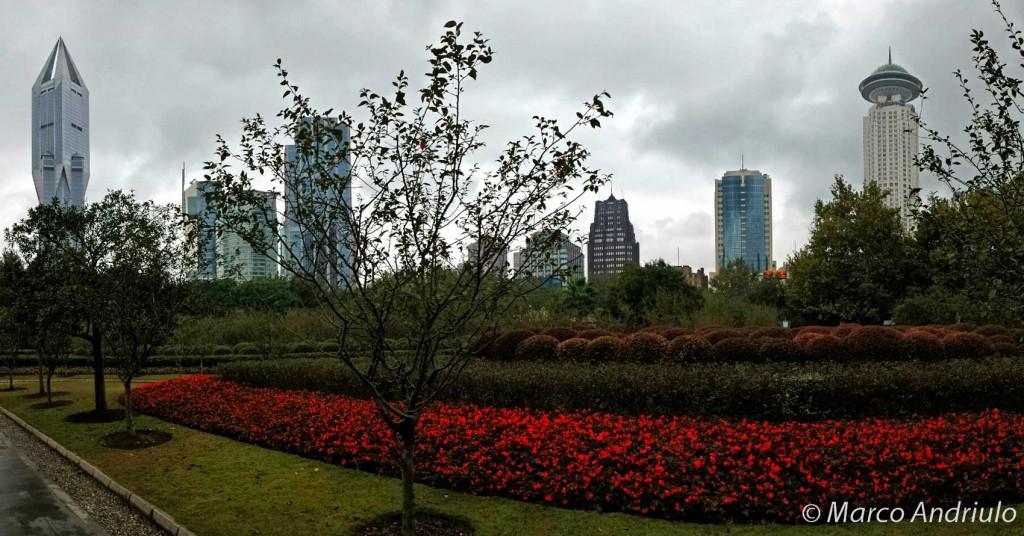 Shanghai (10)